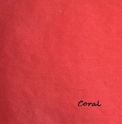 Beach Bags (Coral)